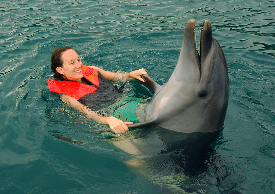 swimming-with-a-dolphin-3