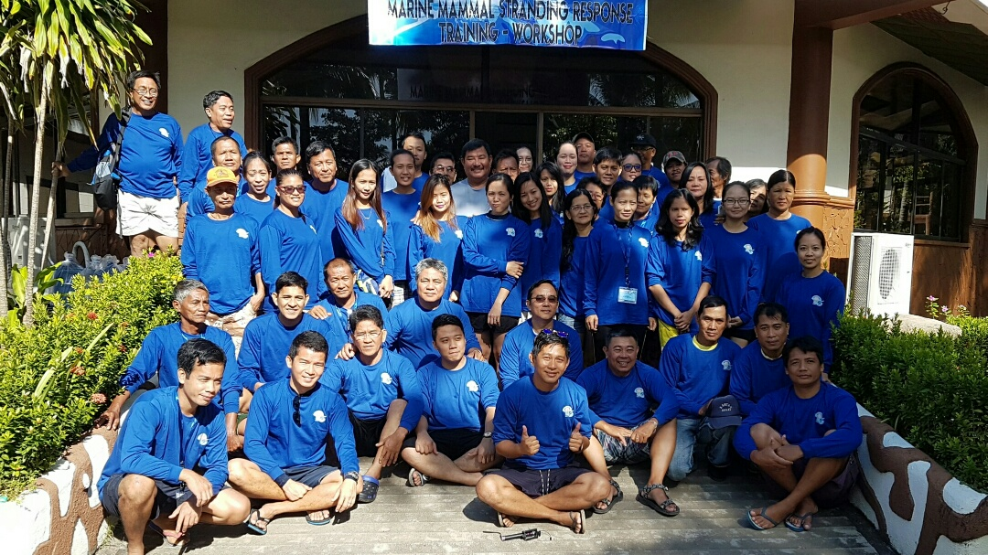 Ocean Adventure's Commitment To Help Stranded Marine Mammals In The Philippines